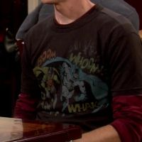Batman & Robin shirt worn by Sheldon on The Big Bang Theory