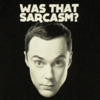 Was That Sarcasm Sheldon Shirt