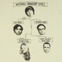 Howard Wolowitz Friendship Levels Shirt